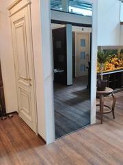 Межкомнатные двери -Зеркальные